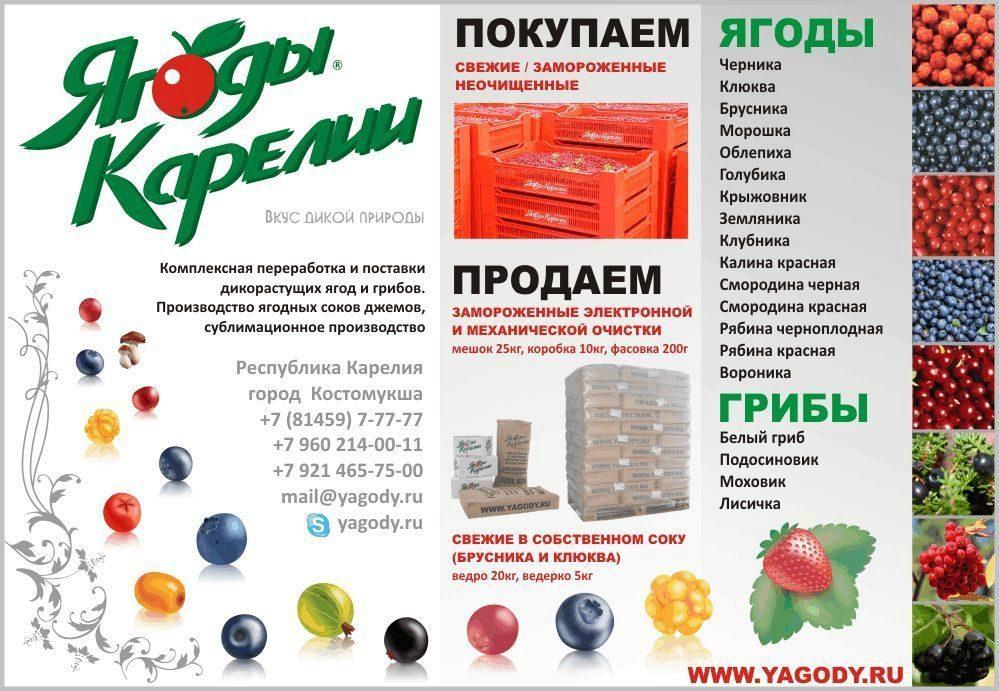 К чему снятся ягоды смородины ягода